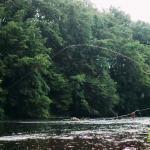Bayern bietet beste Bedingungen für das Fliegenfischen