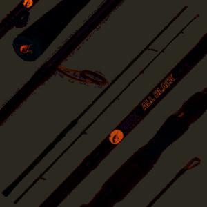Spinnrute, Weihnachtsgeschenkt für Angler All Black Spinnrute für Barsch und Zander; Länge: 240cm WG: 40gr.